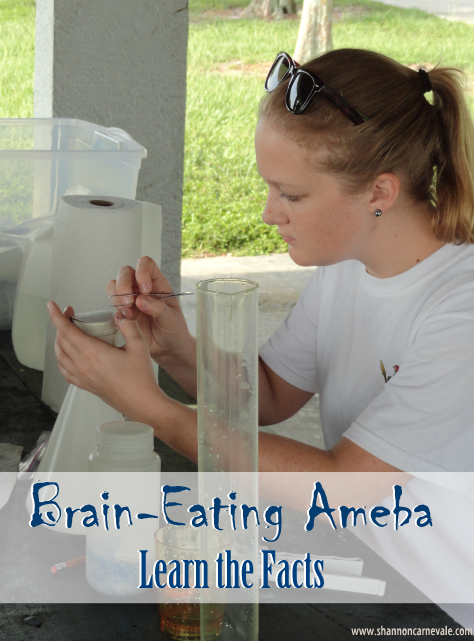 Brain-Eating Ameba, also referred to as Amoeba (British English), terrifies parents up and down the Florida peninsula. Learn the facts in this blog post from Shannon Carnevale.